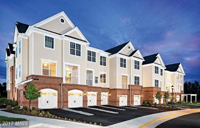 Ashburn Condo For Sale: 23286 Southdown Manor Terrace #108