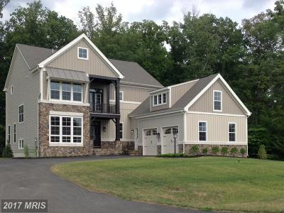 Leesburg Single Family Home For Sale: Courtney's Meadow Pl