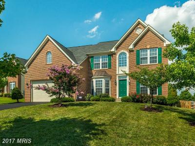 Aldie Single Family Home For Sale: 25440 Fritz Court