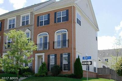 Leesburg Townhouse For Sale: 43129 Rudy Terrace