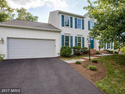 Ashburn Farm Single Family Home For Sale: 20741 Dewberry Court