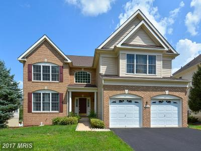 Ashburn Single Family Home For Sale: 20144 Boxwood Place