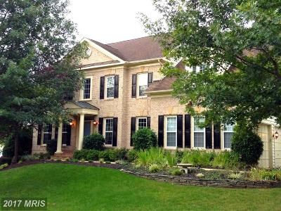 Leesburg Single Family Home For Sale: 18503 Pelicans Nest Way