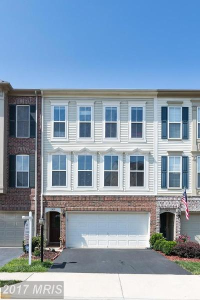 Ashburn Townhouse For Sale: 23433 Spice Bush Terrace