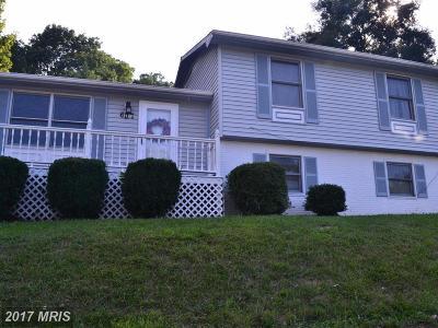 Leesburg Single Family Home For Sale: 607 Rockbridge Drive SE
