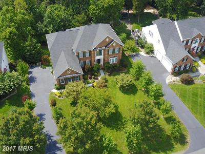 Loudoun Single Family Home For Sale: 22021 Crested Quail Drive
