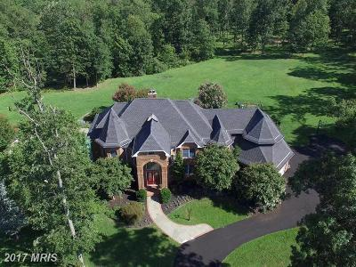 Bluemont, Paris, Middleburg, Upperville, Hamilton, Hillsboro, Lovettsville, Paeonian Springs, Purcellville, Round Hill, Waterford Single Family Home For Sale: 41155 Trotter Lane