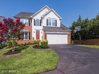 Leesburg Single Family Home For Sale: 43409 Spring Cellar Court