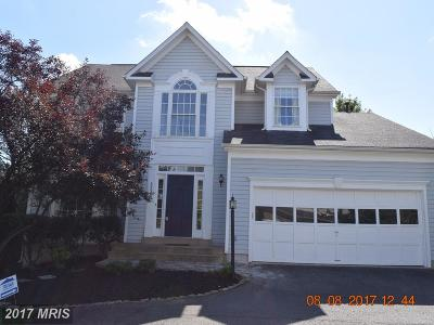 Ashburn Single Family Home For Sale: 42963 Tara Court