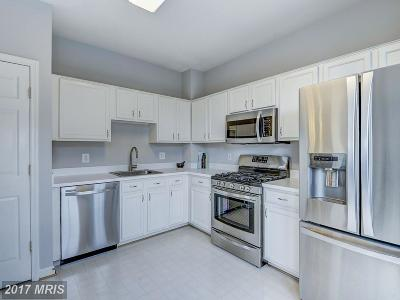 Sterling Condo For Sale: 46606 Drysdale Terrace #302