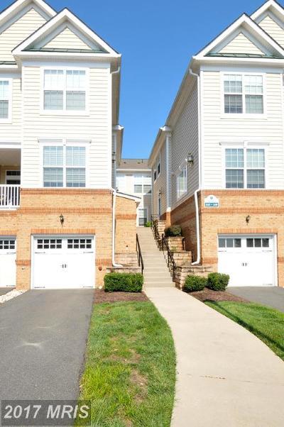 Ashburn Condo For Sale: 43860 Hickory Corner Terrace #106
