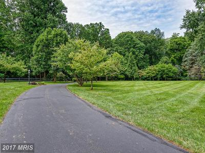 Leesburg Single Family Home For Sale: 19366 Loudoun Orchard Road