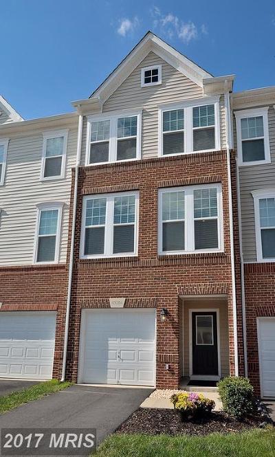 Townhouse For Sale: 43284 Novi Terrace