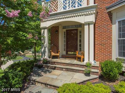 Aldie Single Family Home For Sale: 42092 Flowering Path Place