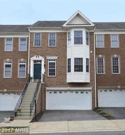 Purcellville Townhouse For Sale: 143 Ivy Hills Terrace