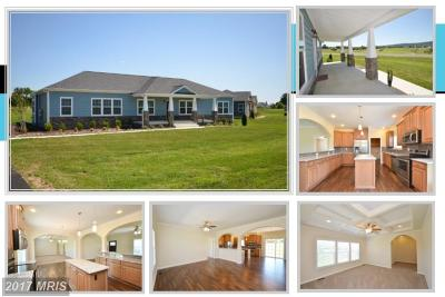 Lovettsville Single Family Home For Sale: 38632 Patent House Lane