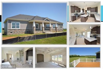 Loudoun Single Family Home For Sale: 12970 Volksmarch Circle
