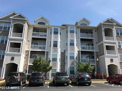 Leesburg Condo For Sale: 512 Sunset View Terrace SE #307
