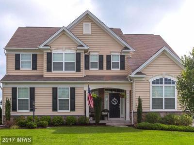 Leesburg Single Family Home For Sale: 43146 Rocks Way