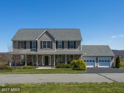Purcellville Single Family Home For Sale: 14194 Salem Church Way