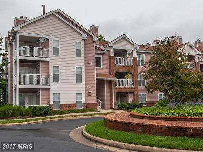 Loudoun Condo For Sale: 20963 Timber Ridge Terrace #202