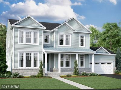 Leesburg Single Family Home For Sale: 1701 Akan Street SE