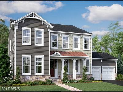 Leesburg Single Family Home For Sale: 1702 Akan Street SE