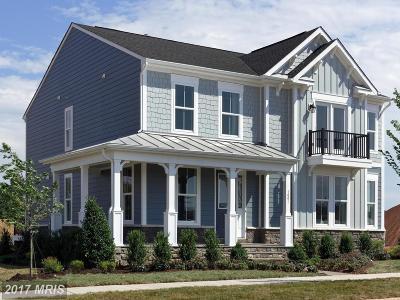 Leesburg Single Family Home For Sale: 1001 Themis Street SE