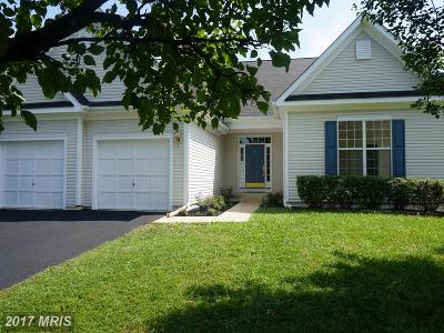 Loudoun Single Family Home For Sale: 17556 Brookville Court