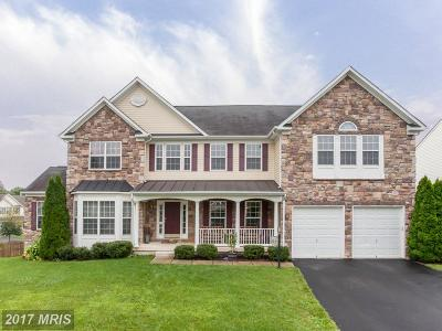 Purcellville Single Family Home For Sale: 300 Spring Branch Court