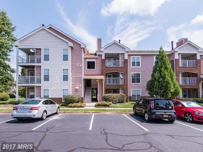 Ashburn Condo For Sale: 20950 Timber Ridge Terrace #202