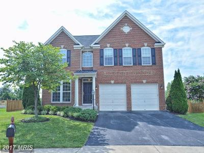 Loudoun Single Family Home For Sale: 38 Tritapoe Place
