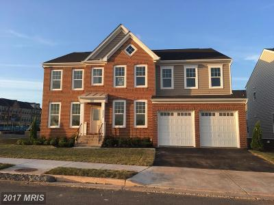 Ashburn Single Family Home For Sale: 42292 Birnam Wood Place
