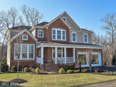 Ashburn Single Family Home For Sale: 50114 Birnam Wood Place