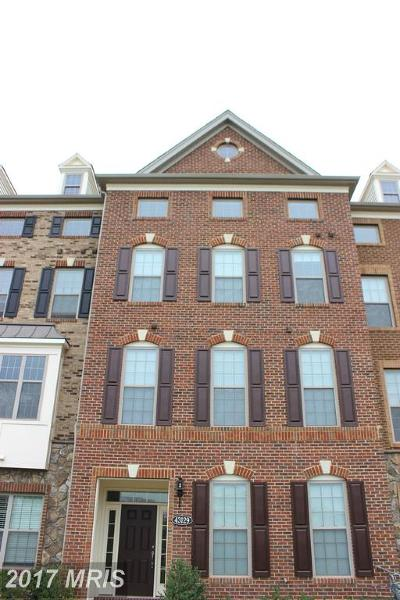 Ashburn Rental For Rent: 43129 Kendrick Square