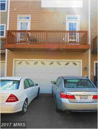 Ashburn Rental For Rent: 20652 Tannahill Terrace
