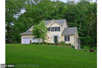 Leesburg Single Family Home For Sale: 13079 Wilt Store Road