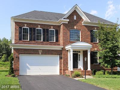 Ashburn Single Family Home For Sale: 42338 Rising Moon Place
