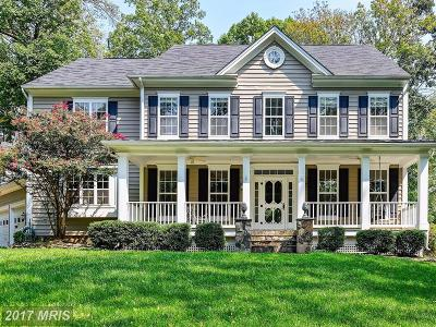 Purcellville Single Family Home For Sale: 18258 Chestnut Grove Court