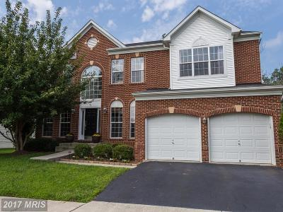 Ashburn Single Family Home For Sale: 22293 Lost Branch Circle