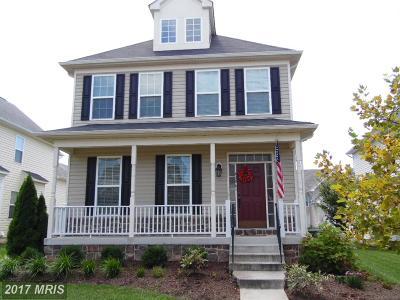 Aldie Single Family Home For Sale: 42061 Greenstone Drive
