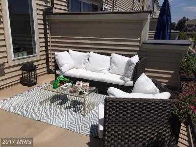 Ashburn Rental For Rent: 42261 Riggins Ridge Terrace