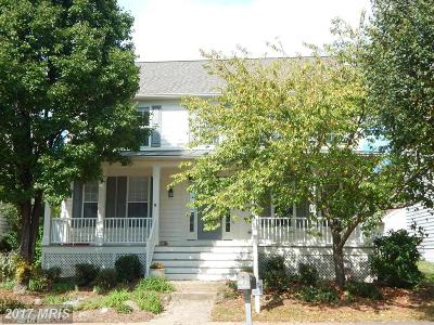 South Riding Single Family Home For Sale: 43092 Demerrit Street
