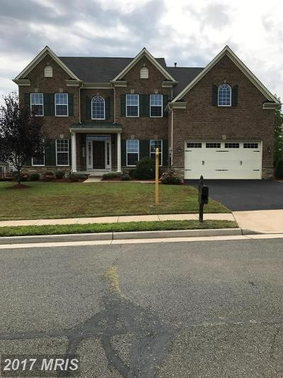 Aldie Single Family Home For Sale: 25338 Understanding Court