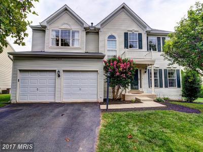 Ashburn Single Family Home For Sale: 43862 Merryoak Way