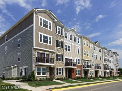 Aldie Condo For Sale: 24499 Amherst Forest Terrace
