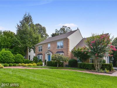 Ashburn Single Family Home For Sale: 44217 Bristow Circle