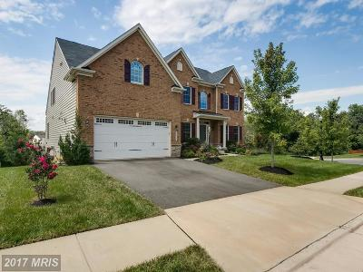 Aldie Single Family Home For Sale: 25727 Purebred Court
