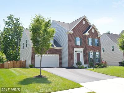 Leesburg Single Family Home For Sale: 40519 Oconnors Circle