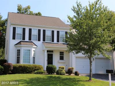 Ashburn Single Family Home For Sale: 21430 Plymouth Place